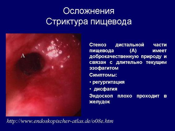 Medicus Amicus - Книжная полка