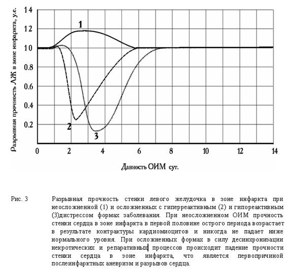 Разрывная прочность стенки левого желудочка в зоне инфаркта при неосложненной (1) и осложненных с гиперреактивным (2) и гипореактивным (3)дистрессом формах заболевания.