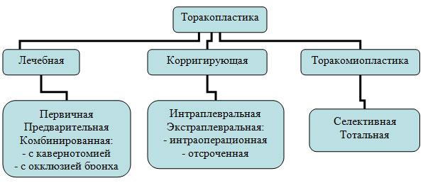 Современная классификация
